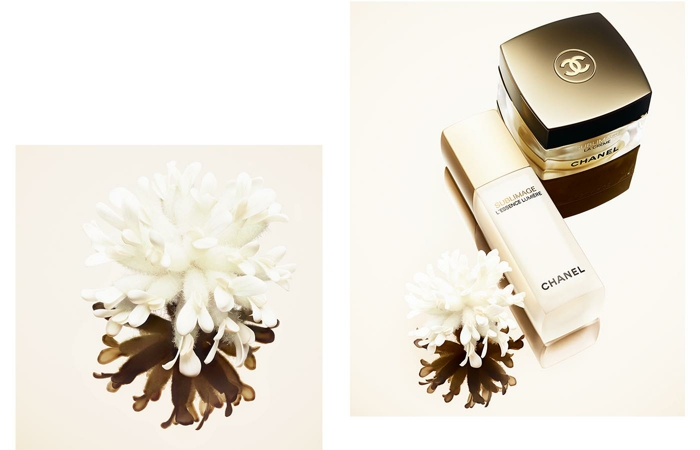 chanel-sublimage-essence